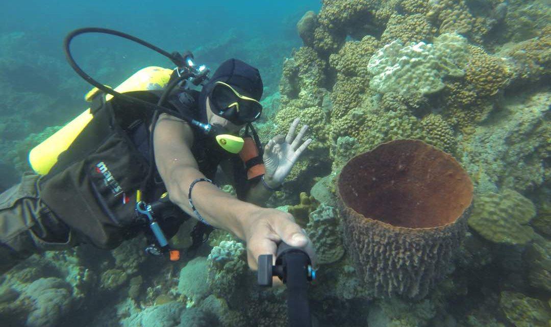 Scuba diving with PADI professionals